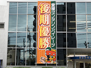 愛媛県マンダリンパイレーツ